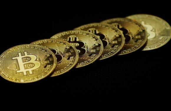 Bitcoin value falls underneath $43K in minutes in the crypto market defeat